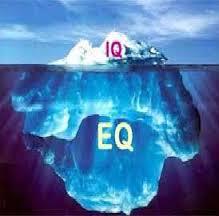 دانلود پرسشنامه هوش هیجانی بار- آن (EQ-i)