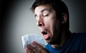 آنفولانزای خوكی